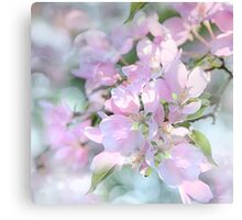 SPRING BLOSSOMS SQUARE FORMAT Canvas Print