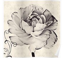 Vintage Black White Flower Retro Floral Flowers Poster
