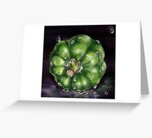 Green Capsicum in the Rain Greeting Card