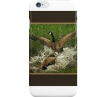 Fighting Geese iPhone Case/Skin