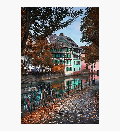 A Leafy Lane in Strasbourg  Photographic Print