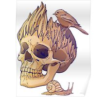 colorful illustration with skull, bird and snail Poster