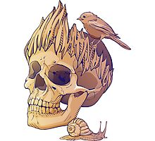 colorful illustration with skull, bird and snail Photographic Print