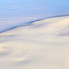 Sand and Water by Angelika  Vogel