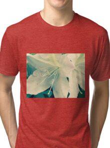 Azalea I Atlanta, GA. If you like, please purchase, try a cell phone cover thanks Tri-blend T-Shirt
