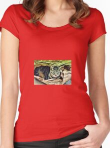 BEAUTIFUL KITTY BELLA IN A BAG Women's Fitted Scoop T-Shirt