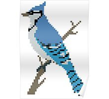 Pixel Blue Jay Poster