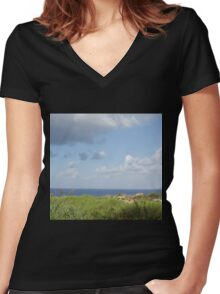 Grass and sea Women's Fitted V-Neck T-Shirt