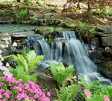 Mini Waterfall by Sandy Keeton