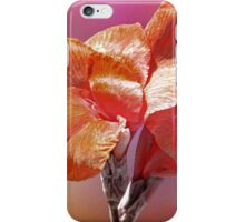 Canna Lily  iPhone Case/Skin