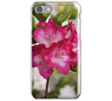 Pink Azalea iPhone Case/Skin