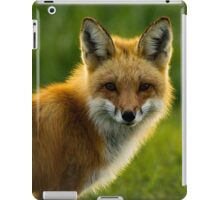 Red Fox Backlit iPad Case/Skin