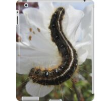 Cute Caterpillar  iPad Case/Skin
