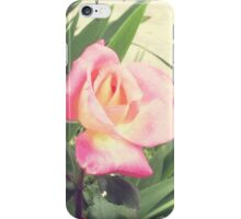 Faded roses iPhone Case/Skin