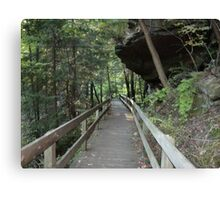 Rock overhang at Mill Creek Park Canvas Print