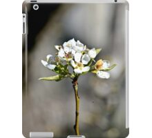 Lonely Blossoms iPad Case/Skin