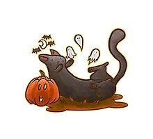 Playful Halloween Kitty Photographic Print