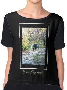 Salt Springs Bear Chiffon Top