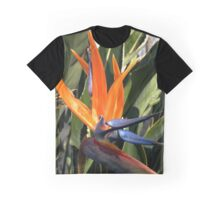 Bird of Paradise (Strelitzia) from A Gardener's Notebook Graphic T-Shirt