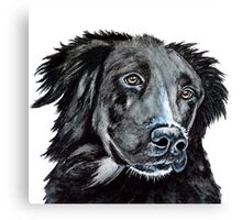 Lonesome Dog Canvas Print