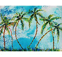 Dancing Palm Trees Photographic Print