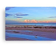 A Coastal Morning Canvas Print