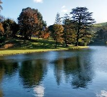 Lake At Littlebredy by Susie Peek