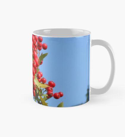 Autumn Glory - Challenge Winner Banner Mug