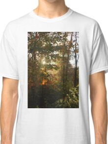 fall spot light Classic T-Shirt