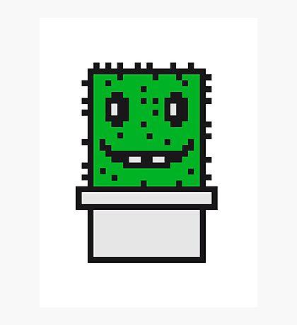 zocken face funny comic cartoon pixel nerd geek gamer videogame 2d 8 bit cactus design games Photographic Print