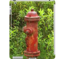 Rust Covered Fire Hydrant iPad Case/Skin