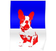 French Bulldog pop art  Poster