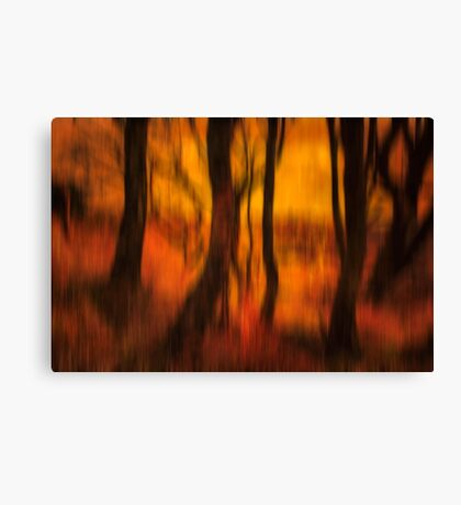 Dusky Memories of Long Forgotten Trees Canvas Print