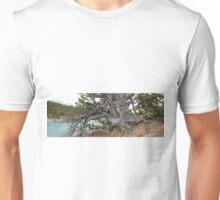 The Pine of Antiquity Unisex T-Shirt