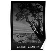 Grand Canyon 03 Poster