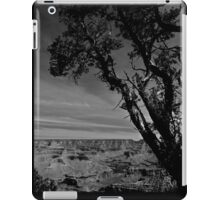 Grand Canyon 03 iPad Case/Skin