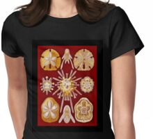 Sand Dollars on Red Womens Fitted T-Shirt