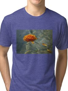 Liquid Rainbows – Chrysanthemum Blossom Floating in the Sunshine Tri-blend T-Shirt