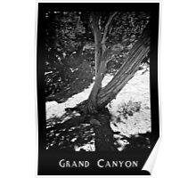 Grand Canyon 05 Poster