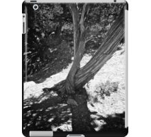 Grand Canyon 05 iPad Case/Skin