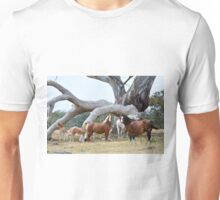 Welsh Mountain Pony Mares and Foals Unisex T-Shirt