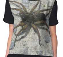 Creepy Crawly Spider  Chiffon Top