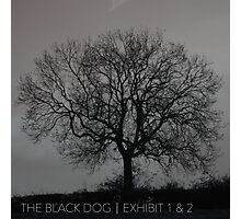 THE BLACK DOG PRODUCTIONS EXHIBIT 1 & 2 EP Photographic Print