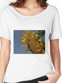 Red Admiral, Bumble Bee & Sunflower Women's Relaxed Fit T-Shirt