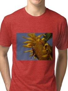Red Admiral, Bumble Bee & Sunflower Tri-blend T-Shirt