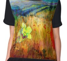 At the Edge of Dreaming Fields Women's Chiffon Top