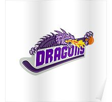 Dragon Fire Hockey Stick Basketball Retro Poster