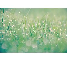 Every dew-drop and rain-drop had a whole heaven within it. Photographic Print