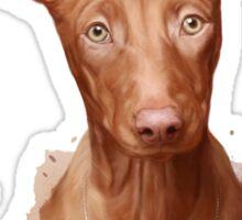 Pharaoh Hound Dog Sticker