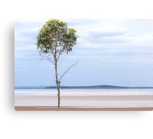 Alone Upon The Shore Canvas Print